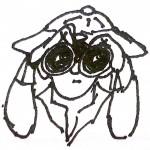 ap_binoculars